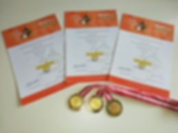 Foto Urkunden mit Medaillen.jpg
