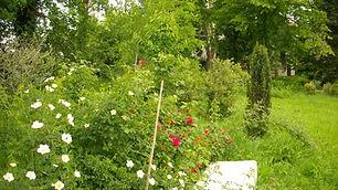 Giardino e panca in pietra