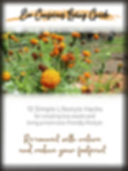 Eco Conscious Living Guide_Cover.jpg