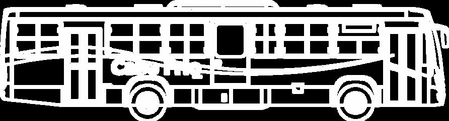 bus salineira.png