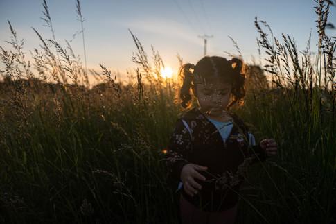 portrait enfant dans la nature photographie couché de soleil chalons en champagne