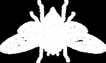 grim tattoo studios cicada logo