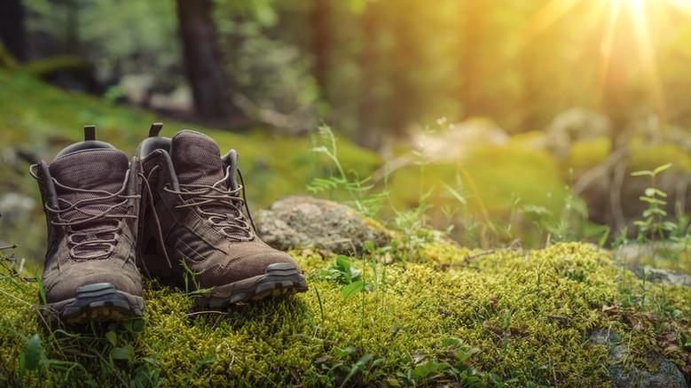 Blootsvoets wandelen in het bos