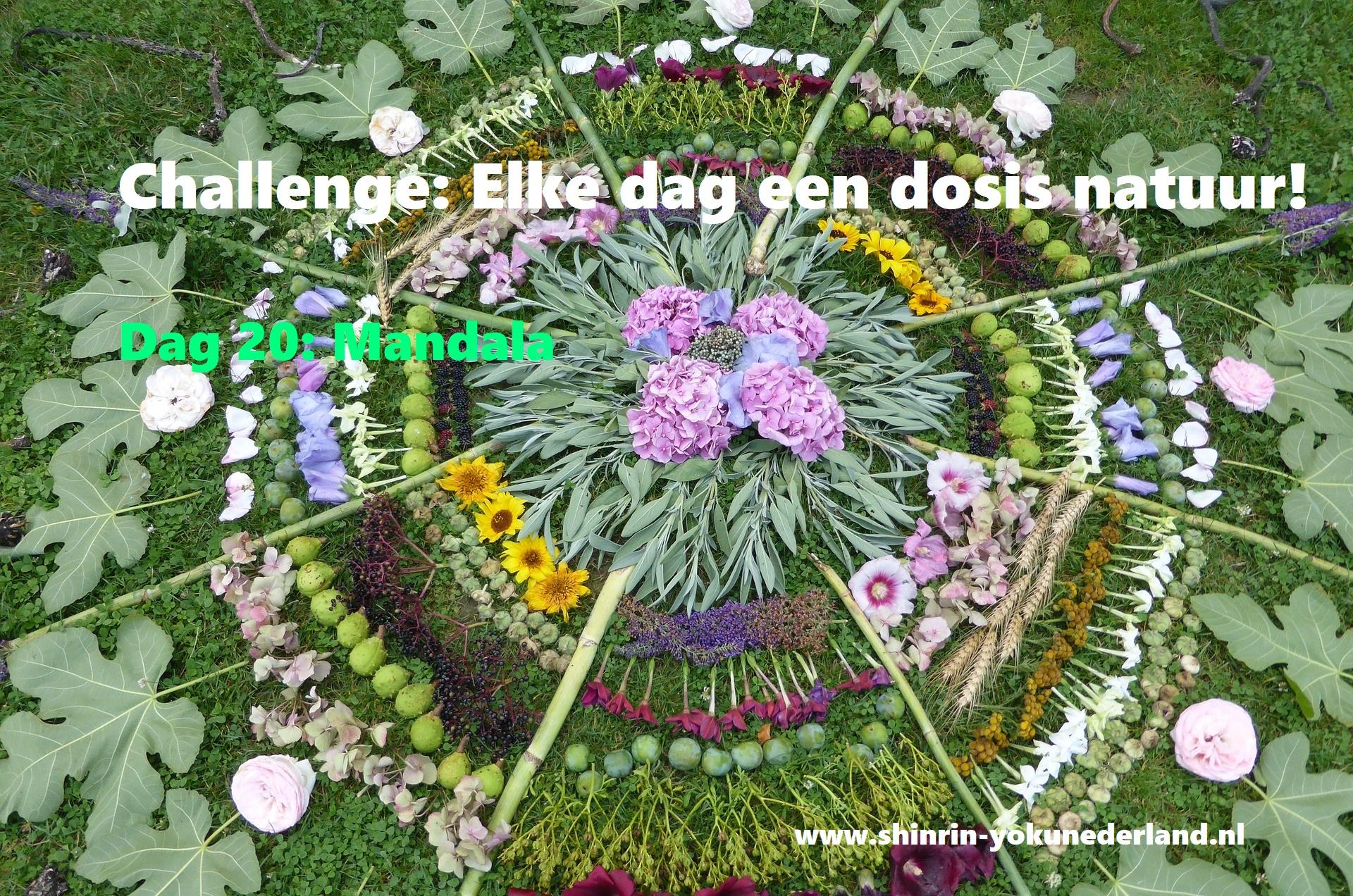Challenge dag 20: Mandala