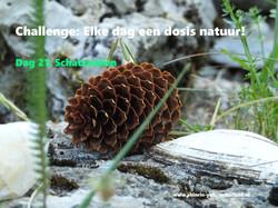 Challenge dag 21: Schatzoeken
