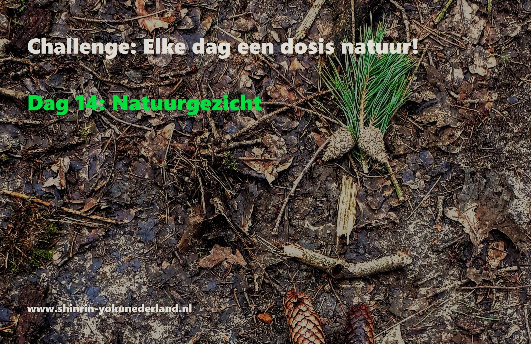 Challenge dag 14: Natuurgezicht