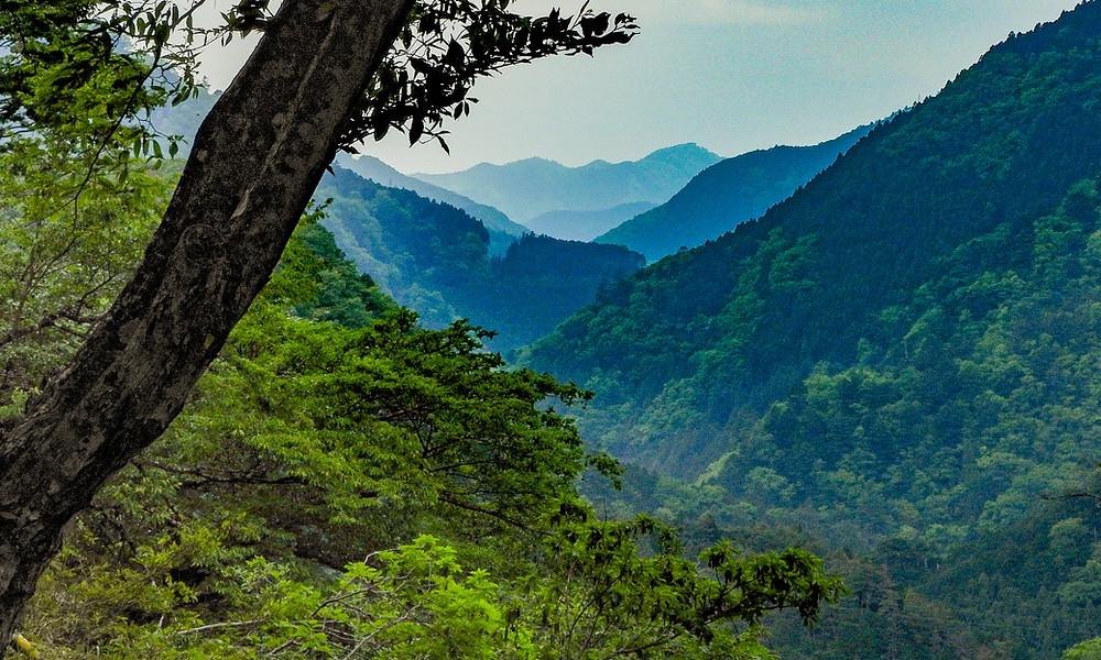Bos en bergen bij het Okutama stuwmeer in Japan). Het uitzicht en de ruimte geven een goed gevoel, waardoor je hoofd en je lichaam tot rust komen. Shinrin-yoku is hier een levensstijl.