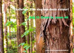 Challenge dag 12: Zoom in, zoom uit