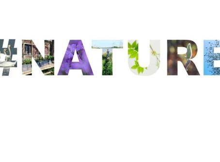 Instagram's Natuur