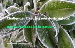 Challenge dag 8: Voeldoos