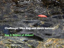 Challenge dag 3: Drijven of Zinken?