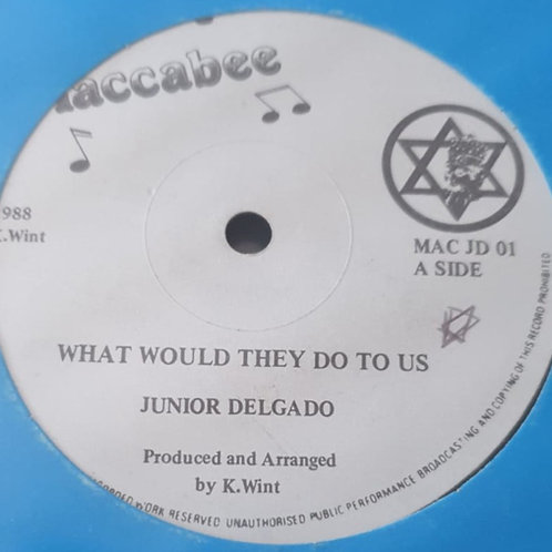 """WHAT WOULD THEY DO TO US JUNIOR DELGADO MACCABEE ORIG 12"""""""