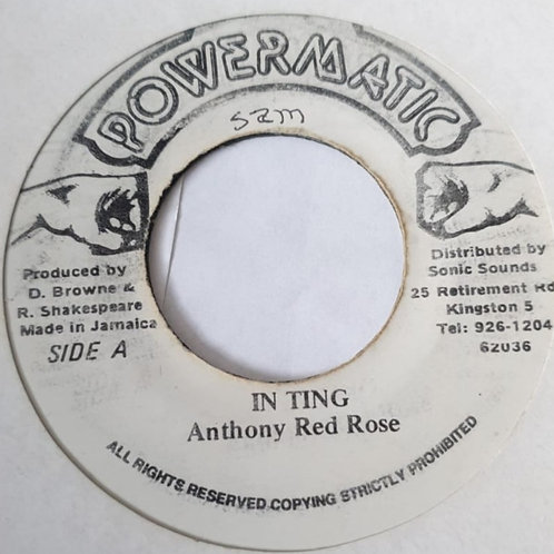 IN TING ANTHONY RED ROSE