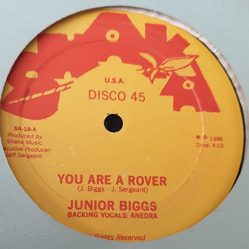 "YOU ARE A ROVER JUNIOR BIGGS SHAKA 12"" DIGI CUT BEVELEY WILLIAMS SUFFERATION"