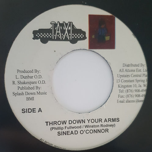 THROW DOWN YOUR ARMS SINEAD O CONNOR