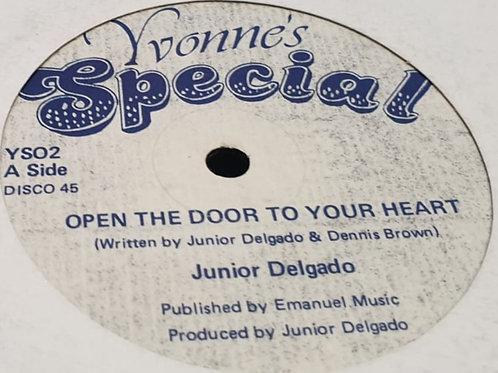 OPEN UP YOUR HEART JUNIOR DELGADO