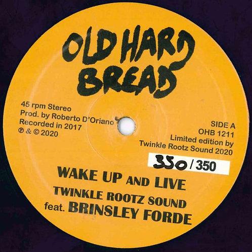 TWINKLE ROOTS SOUNDS OLD HEARD BREA