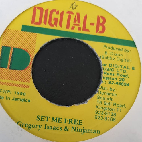SET ME FREE GREGORY ISAACS AND NINJAMAN
