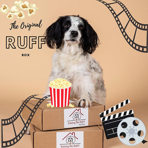 Dog standing on boxes with a movie themed background. Popcorn and movie reels.
