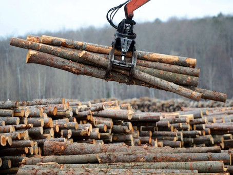 Lumber Prices & Solar Power - Effect on the real estate industry and impact on affordable housing