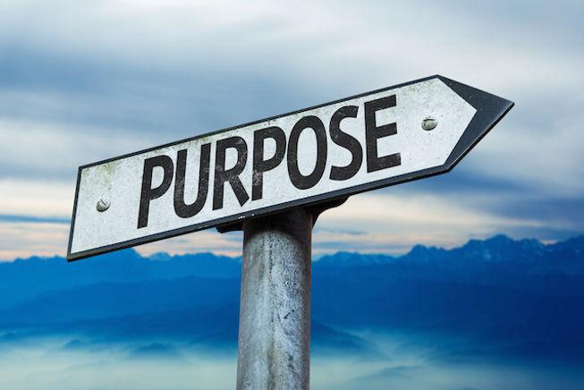 Purpose (1).jpg