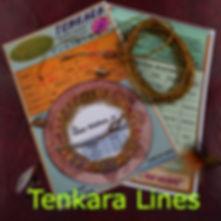 Buy Tenkara fly lines