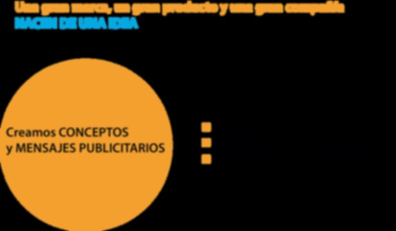 paginas web puerto vallarta