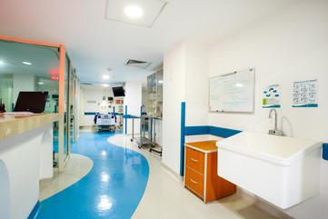 Hospital-Nuevas-35.jpg