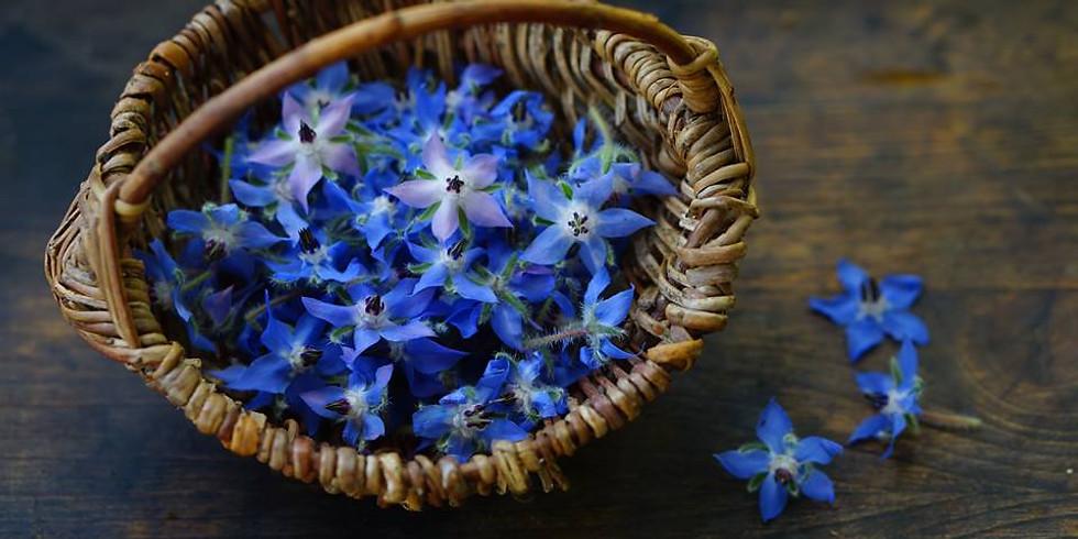 Fleurir au Printemps et prendre soin de soi