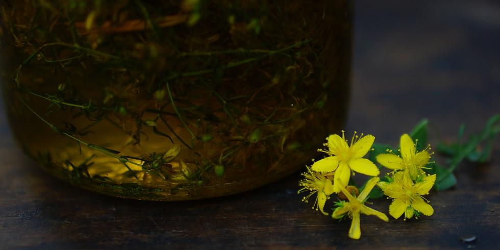 RETRAITE ○ Célébrer le Solstice d'Eté avec les plantes
