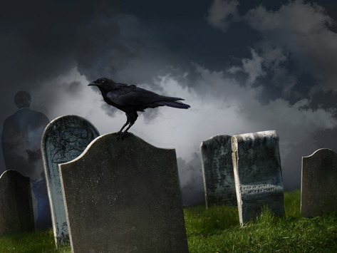Fall is Right Around the Corner! Have You Thought About Life After Death?