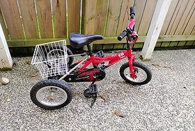 Small Trike.jpg