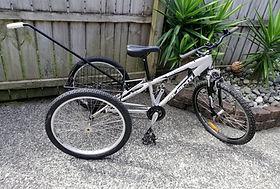 Large trike with pushbar.jpg