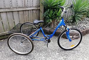 Blue Trike.jpg