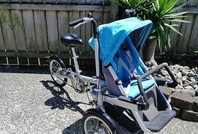 Trike with child seat.jpg