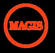 logo_magis.png