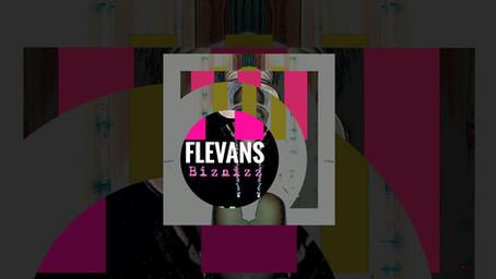 Flevans - Biznizz