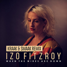 WHEN THE WIRES ARE DOWN (KRAAK & SMAAK REMIX)