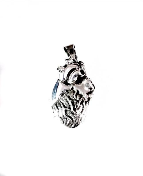 Corazon Anatomico | El relicario de plata, Venta de Joyeria ...
