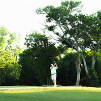 Golf at Traditions Club