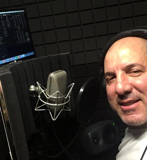 Marantz Vocal Reflection filter