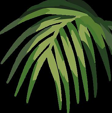 Tropical%20Leaf%20%20%20%20%20%20_edited