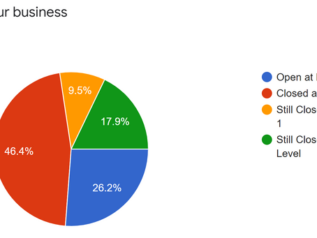 Level 3 - 2021 Business Insights Survey