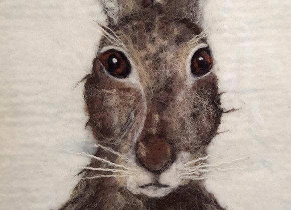 Hare Kit