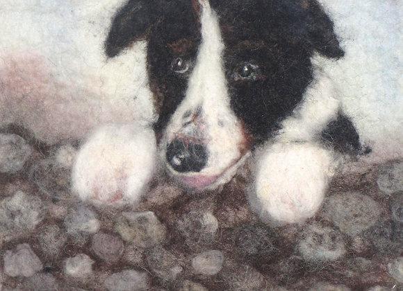 Collie Dog Kit