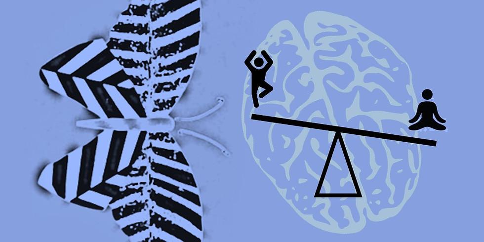 Atelier Zébré : équilibrage du système nerveux