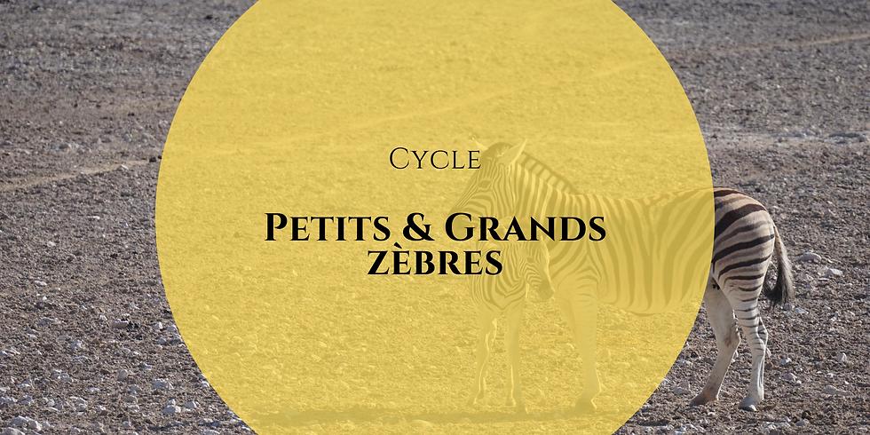 Cycle Petits et Grands zèbres