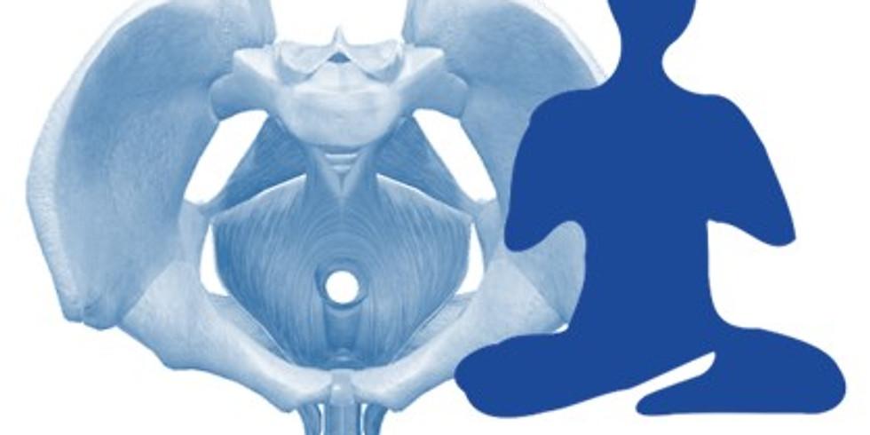 BMC et Yoga : Le périnée