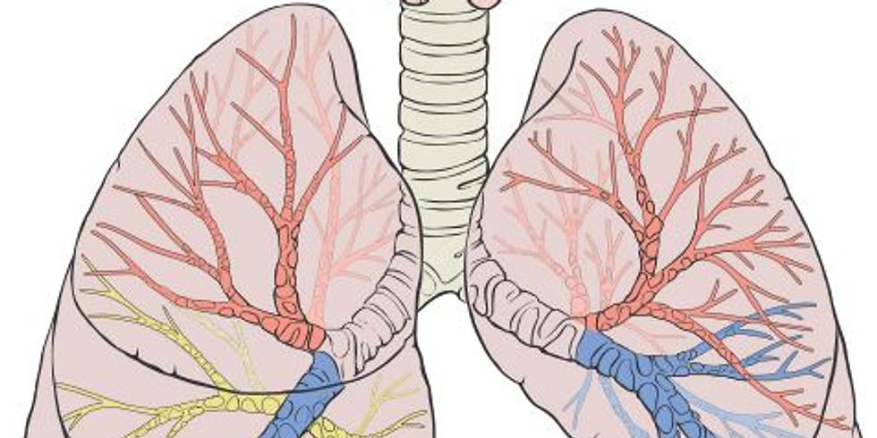 Atelier du corps - Respiration et Voix
