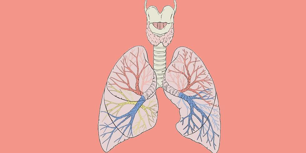 Atelier du corps : Respiration